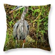 Proud Heron Throw Pillow