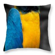 Proud Yellow Throw Pillow