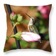 Proudful Little Hummingbird Throw Pillow