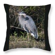 Pround Blue Heron Throw Pillow