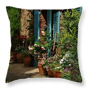 Provencal Alley Throw Pillow