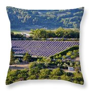 Provence Farmland Throw Pillow