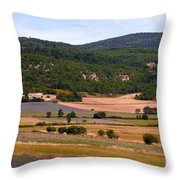 Provence Landscape Throw Pillow
