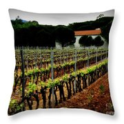 Provence Vineyard Throw Pillow by Lainie Wrightson