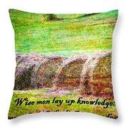 Proverbs 10 14 Throw Pillow