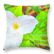 Proverbs 22 11 Throw Pillow