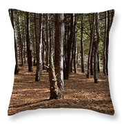 Provin Trails Park Forest Throw Pillow
