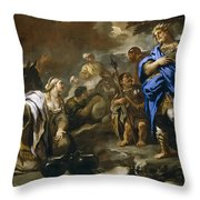 Prudent Abigail Throw Pillow