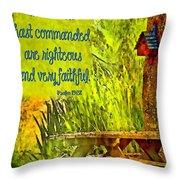 Psalm 119 138 Throw Pillow
