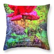 Psalm 119 58 Throw Pillow