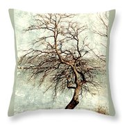 Psalms 24 V 1 Throw Pillow