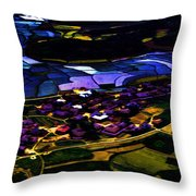 Psychadelic Aerial View Throw Pillow
