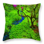 Psychedelic Adventure  Throw Pillow