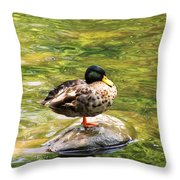 Psychedelic Duck  Throw Pillow