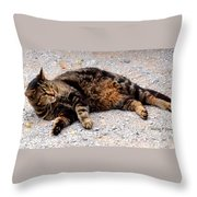 Psycho The Cat Throw Pillow