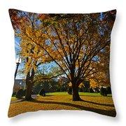 Public Garden Fall Tree Throw Pillow
