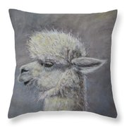 Pucker Up Baby Throw Pillow