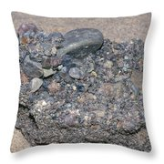 Puddingstone Conglomerate Throw Pillow