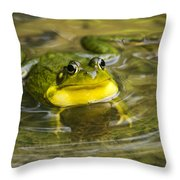 Puddle Jumper Throw Pillow