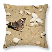 Puddling Beauty 8766 Throw Pillow