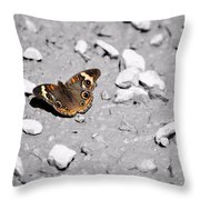 Puddling Butterfly 8766 Throw Pillow
