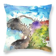 Puerto De La Cruz 06 Throw Pillow