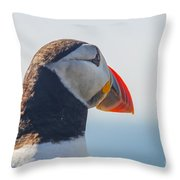Puffin In Close Up Throw Pillow