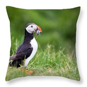 Puffin With Sandeels Throw Pillow