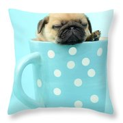 Pug In A Cup Throw Pillow by Greg Cuddiford