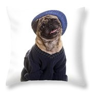 Pug In Sweater And Hat Throw Pillow