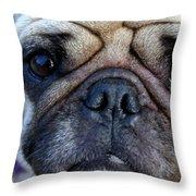 Pug Mug Throw Pillow