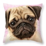 Pug Portrait Throw Pillow by Greg Cuddiford