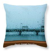 Puget Sound Sunshine Throw Pillow