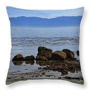 Pugett Sound Throw Pillow