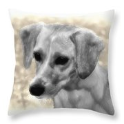 Puggles Throw Pillow by Bill Cannon