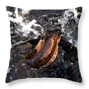 Puhi'ula The Giant Red Eel  Throw Pillow