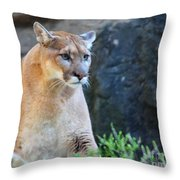 Puma On The Watch Throw Pillow