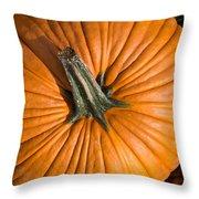 Pumpkin Aerial View Throw Pillow