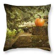 Pumpkin Throw Pillow by Amanda Elwell