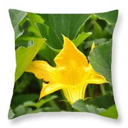 Pumpkin Flower Throw Pillow