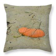 Pumpkin In The Sand Throw Pillow