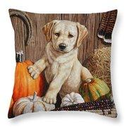 Pumpkin Puppy Throw Pillow