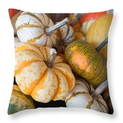 Pumpkins On Pumpkin Patch Throw Pillow