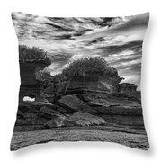 Punakaiki Truman Track #2 - Black And White Throw Pillow