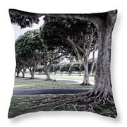 Punchbowl Cemetery - Hawaii Throw Pillow by Daniel Hagerman