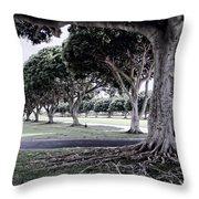 Punchbowl Cemetery - Hawaii Throw Pillow