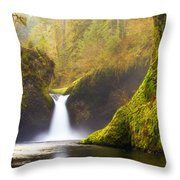 Punchbowl Pano Throw Pillow