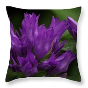 Puple Passion Throw Pillow