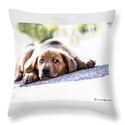 Puppet Dog Throw Pillow