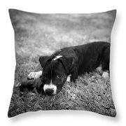 Puppy Eyes In Black And White Throw Pillow